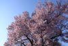 060428_takato06