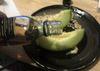 1015_melon